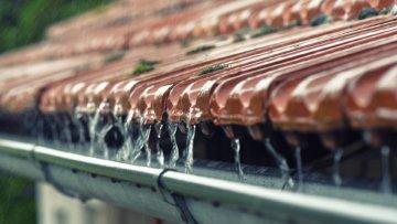 Regenwasser effektiv nutzen – So geht's