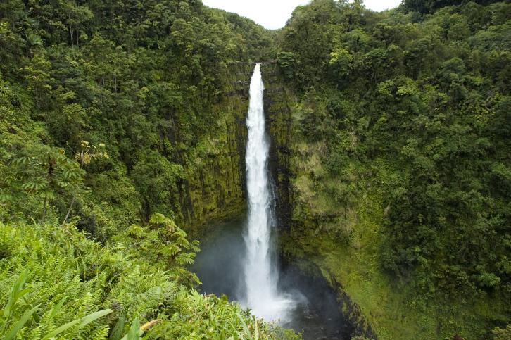 Die Akaka Wasserfälle im Akaka Falls State Park sind 442 Fuß (135 m) hoch