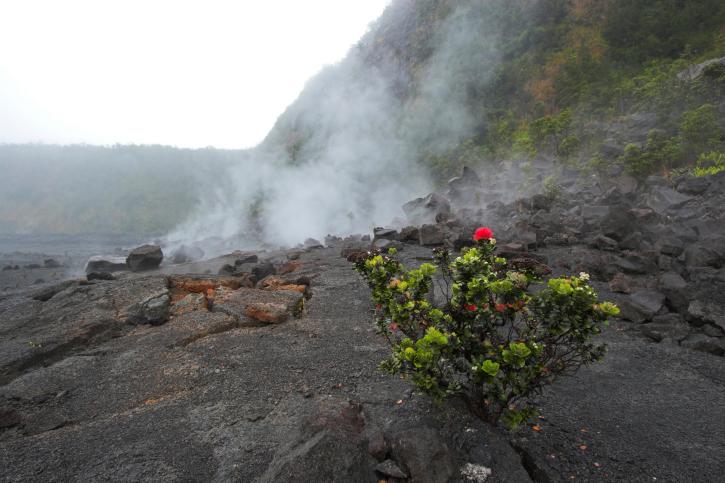 Vulkane auf Big Island