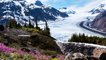 Reiseführer Alaska: eine Goldgrube für Outdoorfans und Naturliebhaber