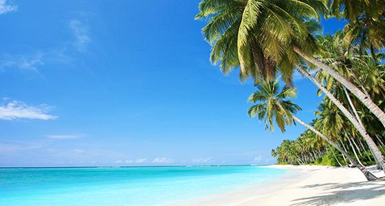 Reiseführer Hawaii: Die schönsten Hawaii Strände auf Big Island