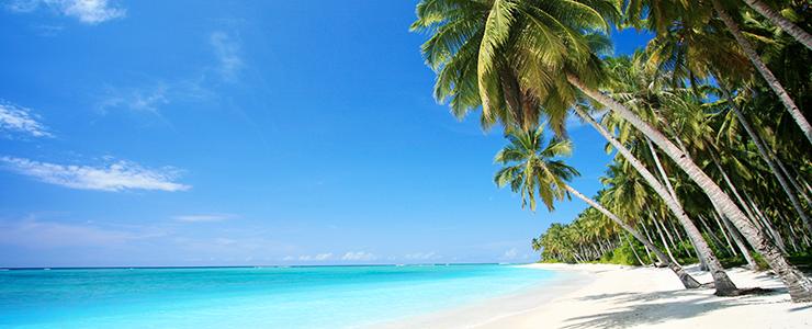 Reiseführer Hawaii: Die schönsten Strände auf Big Island