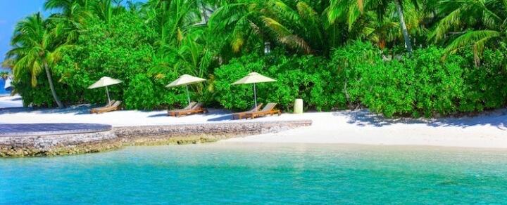 Seychellen – Paradies unter Palmen