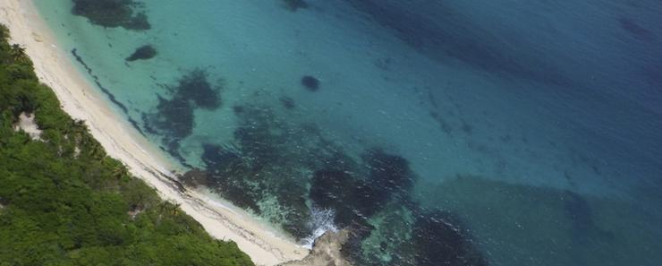 Martinique Reiseführer: französische Insel mit landschaftlicher Vielfalt