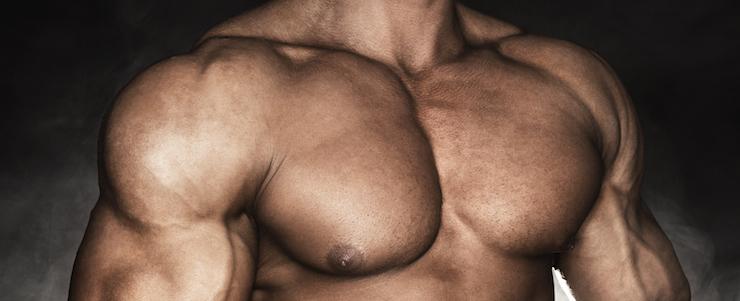 Brustmuskeltraining – Der ultimative Guide zur starken Brustmuskulatur