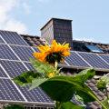 solaranlage kosten eigenheim
