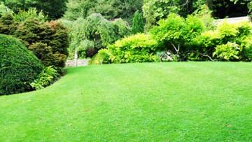 Mit diesen Tipps wird der Garten zur Wohlfühloase