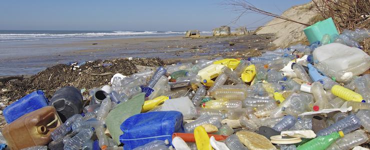 Rettet unseren Planeten: Welche Maßnahmen sind notwendig, was kann der einzelne Mensch beitragen?