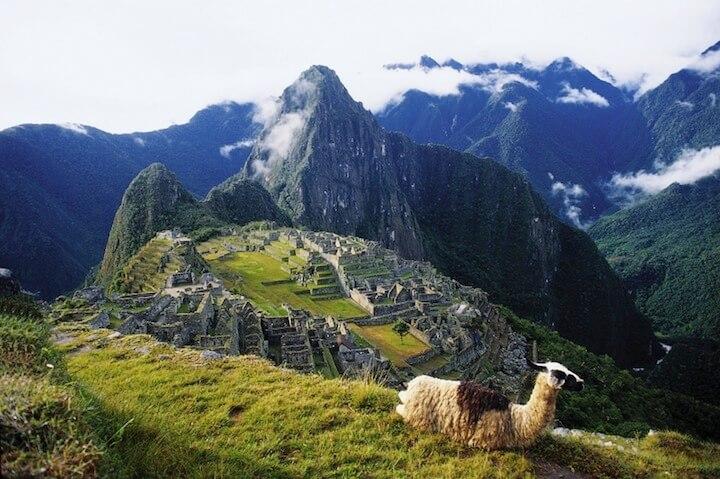 Alpaca vor Machu Picchu | © panthermedia.net / Juergen Buettner