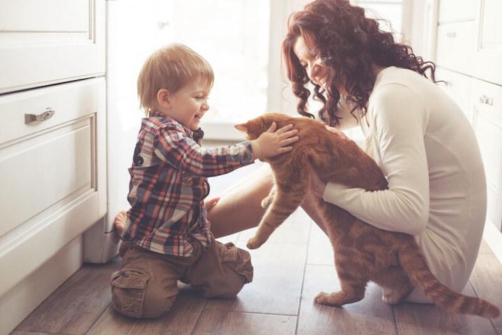 Die Haustiere gut versorgt wissen | © panthermedia.net /alenkasm