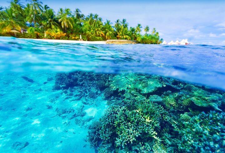 Malediven versinken im Meer | © panthermedia.net / Anna Omelchenko