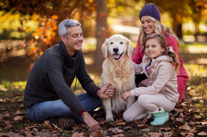 Haustier Ja oder Nein? – Vor- und Nachteile der flauschigen Vierbeiner