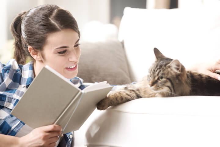 Katze als Zuhoerer | © panthermedia.net / stokkete