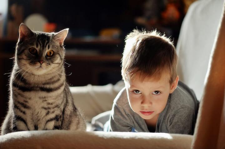 Katze und kleiner Junge | © panthermedia.net / Alekuwka