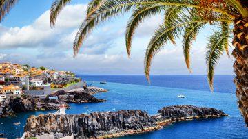 Reiseführer Madeira – Unser liebstes Ziel für den Frühlingsurlaub in Mitten traumhafter Flora und Fauna