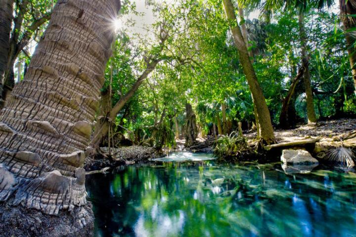 Australien Natur | © panthermedia.net /kwest