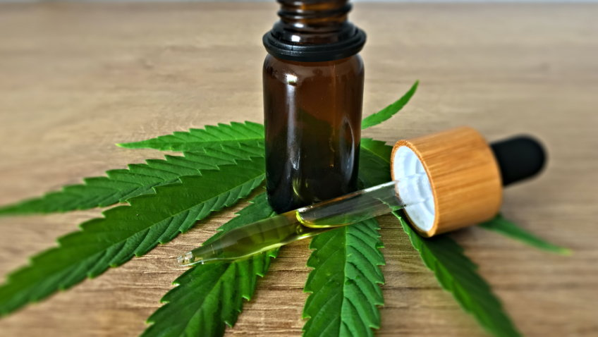 CBD Öl und das Endocannabinoid-System