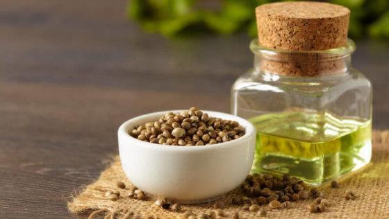 Cannabis – Wie Hanfprodukte euch im Alltag gesund unterstützen können
