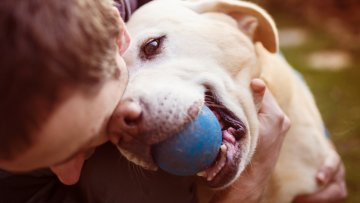 Mit dem Hund gesund durch den Sommer – Tipps & Tricks für den Hund bei hohen Temperaturen